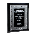 Frosted Lucite on Black Piano Plaque and Color Plate Achievement Awards